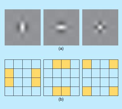 Introduction — Pytorch Wavelets 0 1 1 documentation